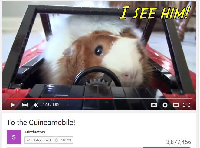 To the Guineamobile